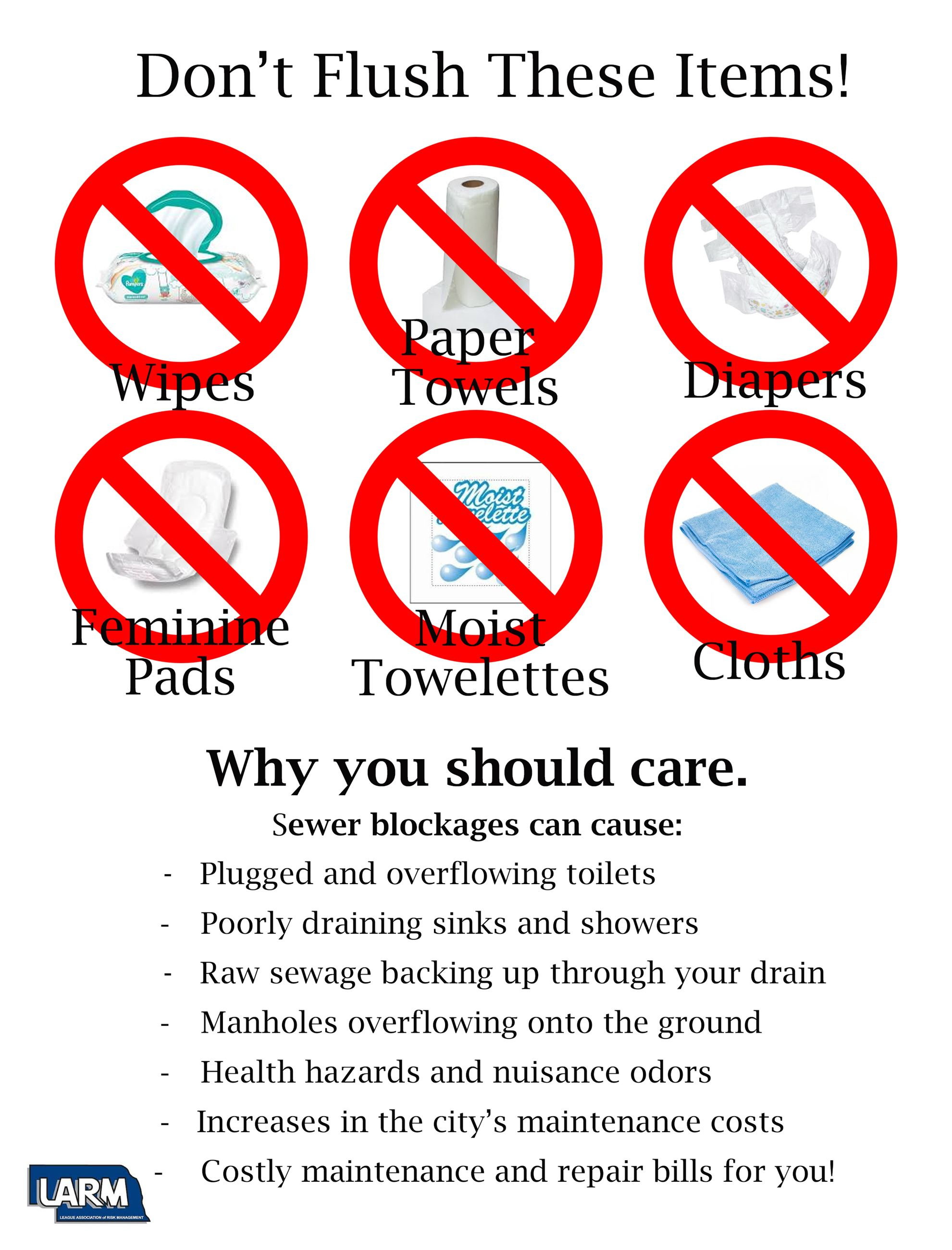 Dont flush these items poster